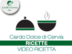 Cardo di Cervia Video ricetta cardodicervia.it